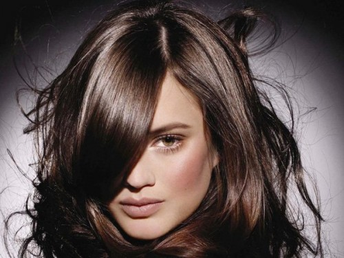 Best Color To Highlight Brown Hair With